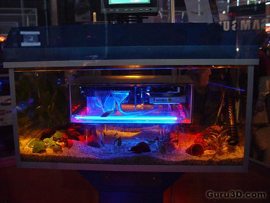Fish Tank Pc Linus Cadillac