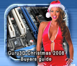Guru3D Christmas Buyers Guide 2008